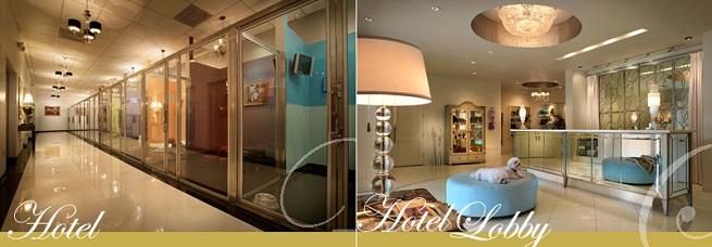 Chteau Poochie Resort amp Spa Hotel De Lujo Para Perros