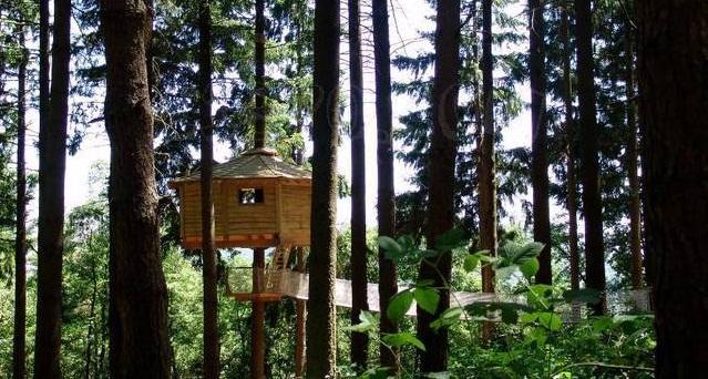 Dormir en un rbol en las 39 cabanes als arbres 39 de girona for Hoteles originales cataluna