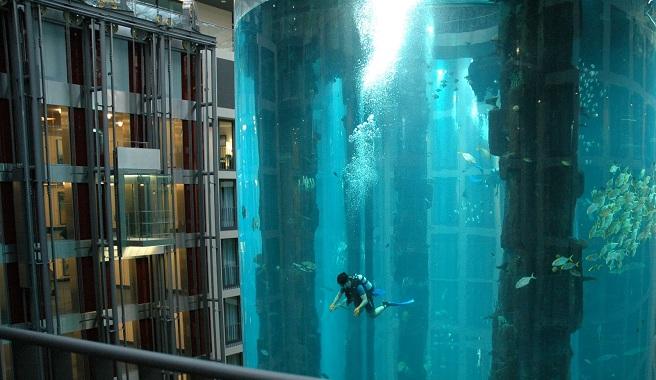 El acuario gigante del radisson blu hotel de berl n for Hoteles diseno berlin